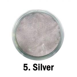 Vopsea Acrilică Metalizata - nr.05 - Silver